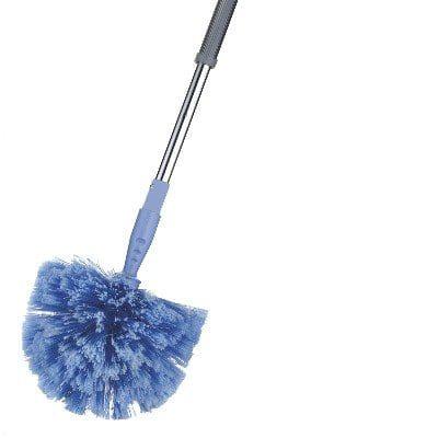 Domed Cobweb Broom